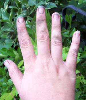 How To Clean Your Dirty Gardening Hands