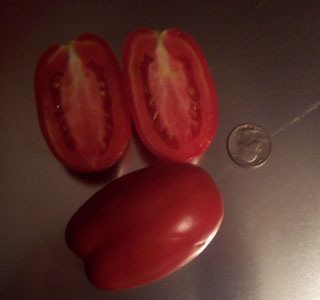 Health Kick or Healthy Choice Tomato