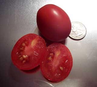 Thai Pink Tomato