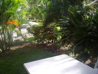 Vacation Garden